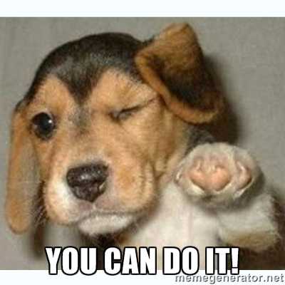 You-Can-Do-It-Meme-Puppy-2