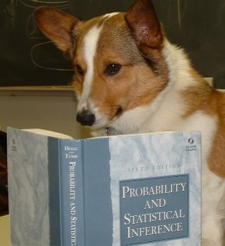 Copy-of-Dog-Math-1
