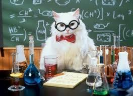 cat-math